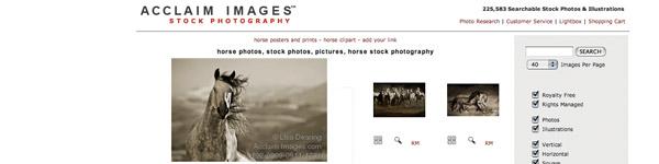 Acclaim Images