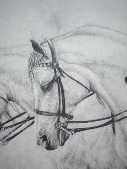 Alexandra Kitt Horse Artist Interview The Equinest