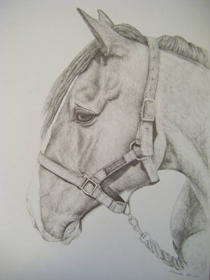 Alexandra's work
