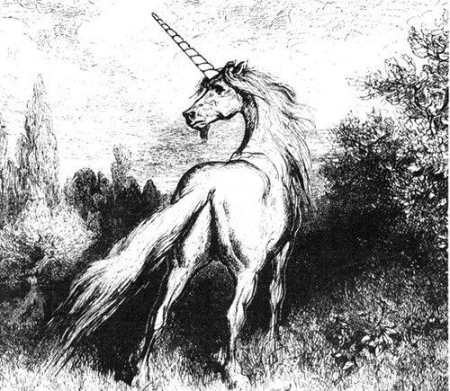 A horse with a bayonet