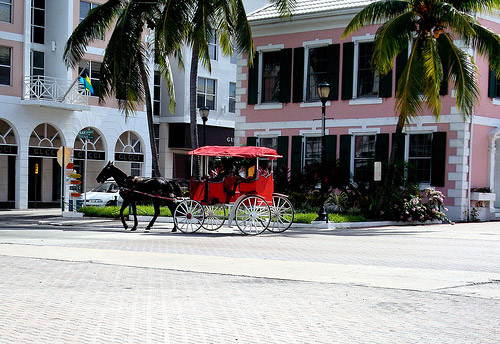 Horse and carriage in The Bahamas