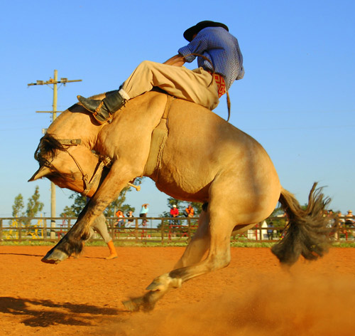Man riding bucking horse