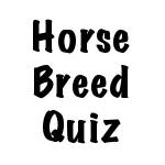 Name That Horse Breed Quiz