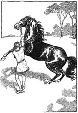 Alexander & Bucephalus