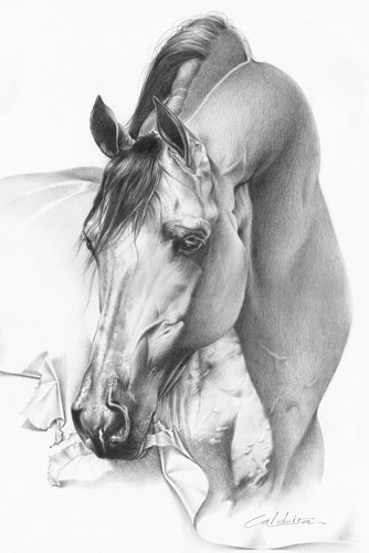 wicked horse art