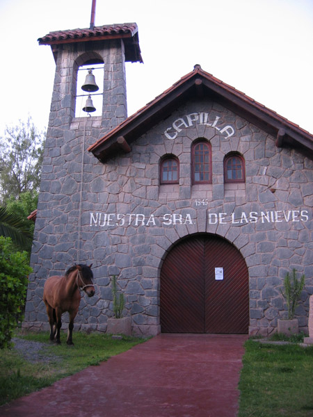 A horse standing outside a chapel