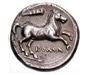 Horse Coins
