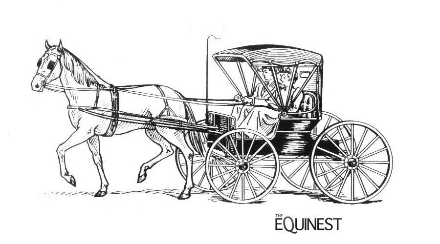 Horses At Work Coloring Pages | The Equinest