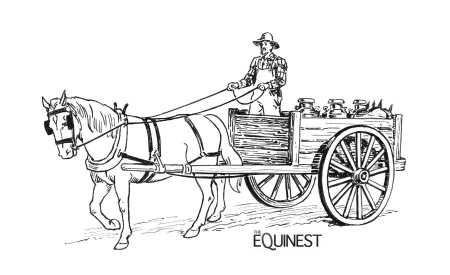Horse Coloring Page Medium
