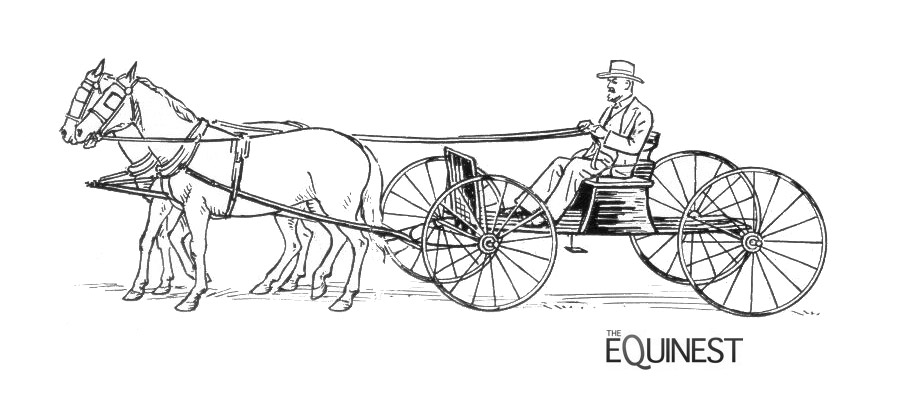 Horses at work coloring pages the equinest more fun horse line drawings for coloring this time horses at work whether it is pulling a wagon or getting ready to round up the cattle ccuart Choice Image
