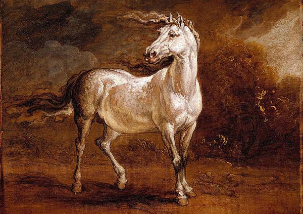 Cossack Horse