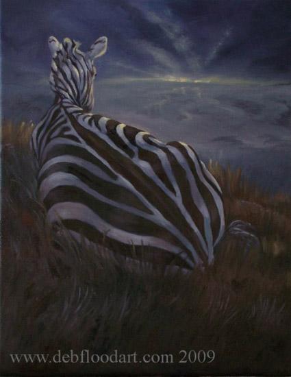 Zebras new day