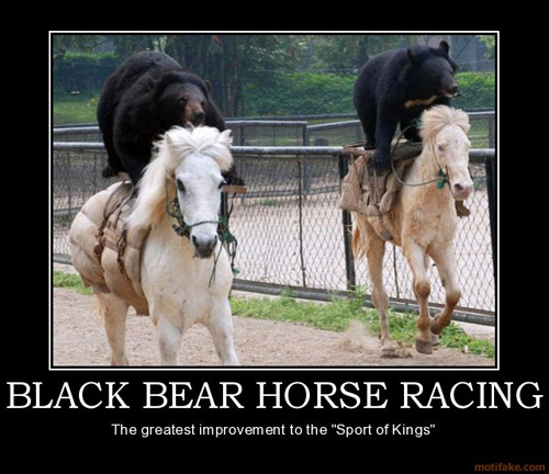 Black bear horse racing. The greatest improvement to the Sport of Kings