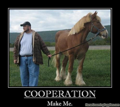 Cooperation. Make me.