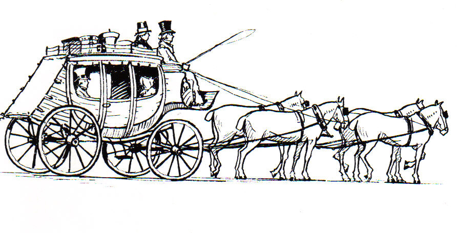 Horse Line Drawings To Color The Equinest
