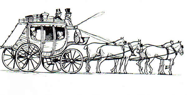 Horse Line Drawing