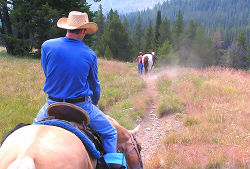 Horse Trail Engineer