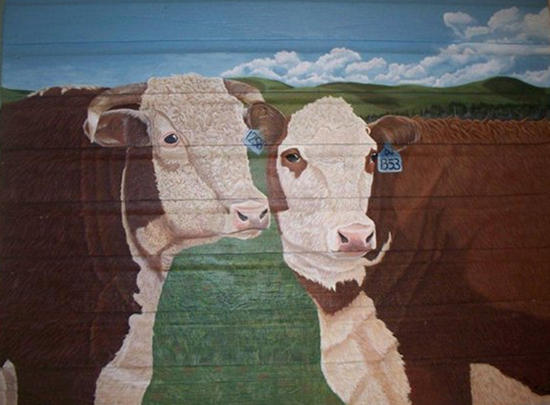 Pair O' Herefords