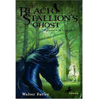 The Black Stallion's Ghost!