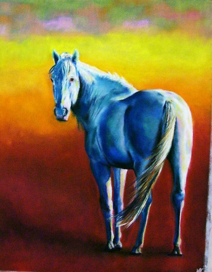 White horse in pastel