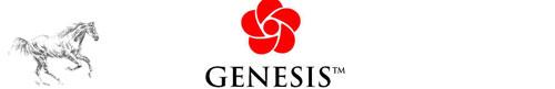 Genesis Organic Horse Feed
