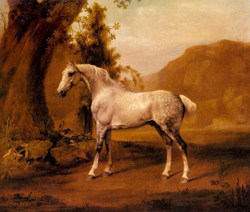 A Grey Stallion In a Landscape