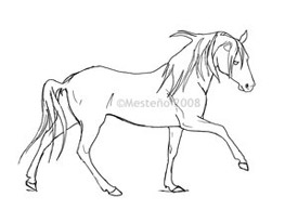 Horse for Coloring