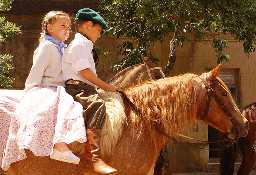 Horses and Their Kids | The Equinest