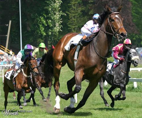 Photoshopped horse racingPhotoshopped Horses