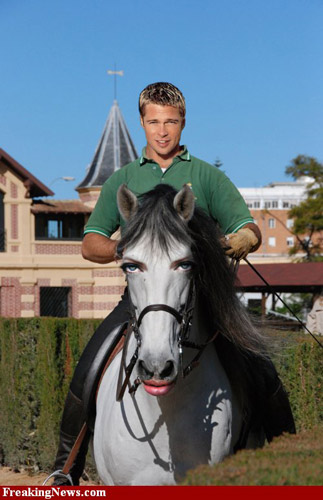 Photoshopped Brad riding Angelina Horse
