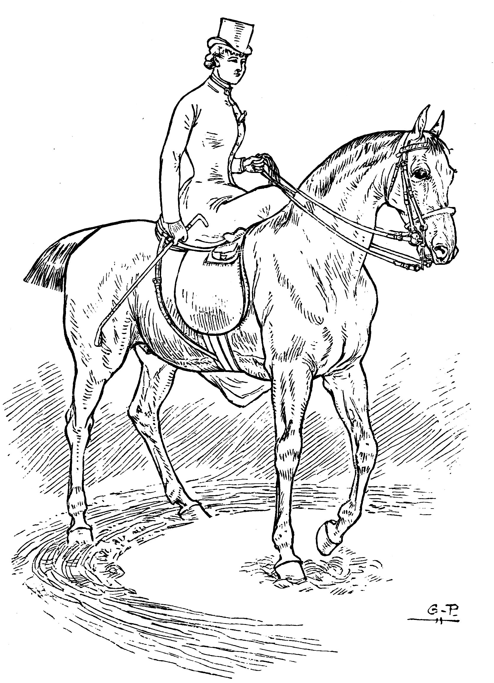 horsemanship for women line drawings to color the equinest