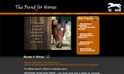 The Fund for Horses screenshot