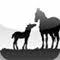 Horse Glossary