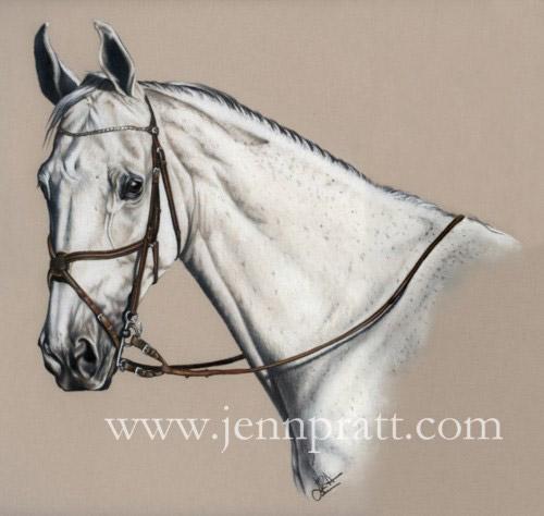 horse drawings in pencil. start drawing horses?
