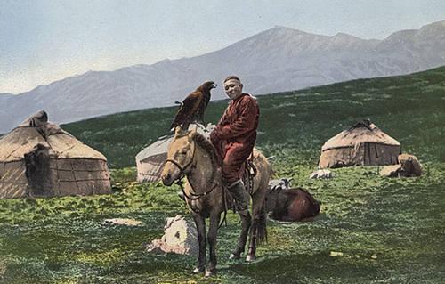 Kazakh Horse