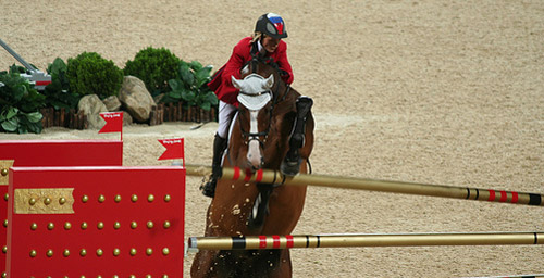 Horses lovers horse show terminology and lingo for Negative show pool horse racing