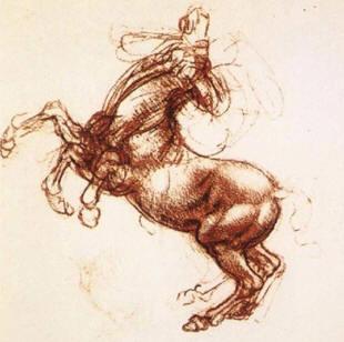 Leonardo da Vinci Horse Sketch
