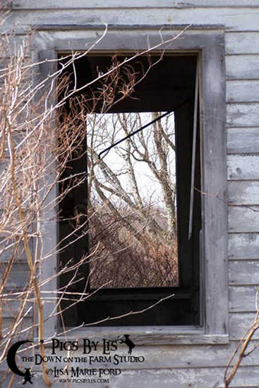 Through the Window Frame