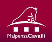 2010 MalpensaCavalli Horse Show