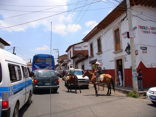 Horses in Mexico