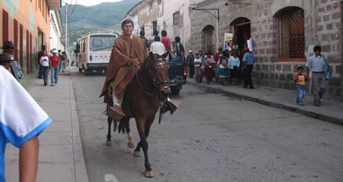 Morochuco Horse