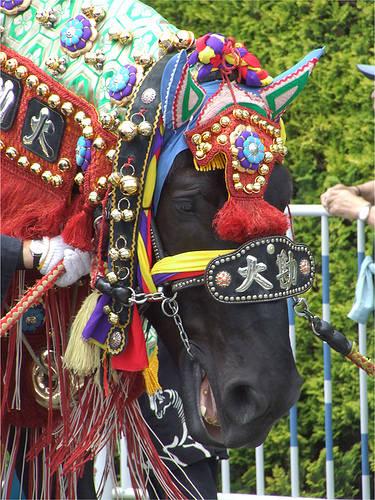 Nambu Horse