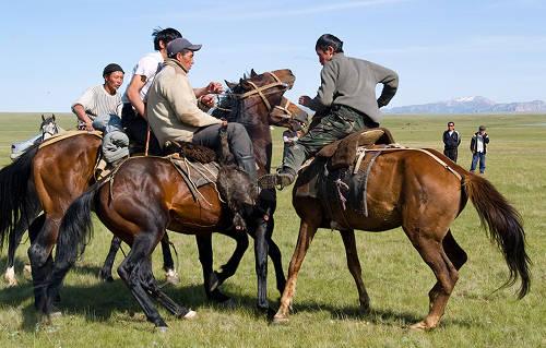 New Kirgiz Horse