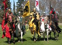 Horse & Equine Organizations