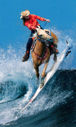 Surfing Horse Photoshop image