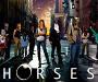 Horse Photoshop