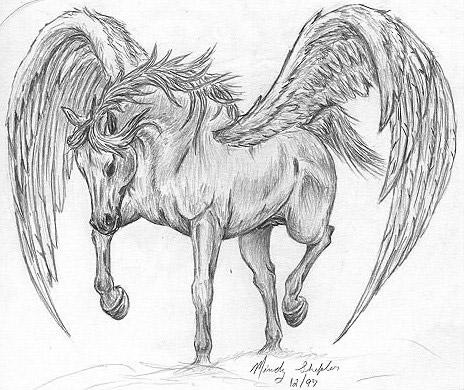 Pegasus Art The Equinest