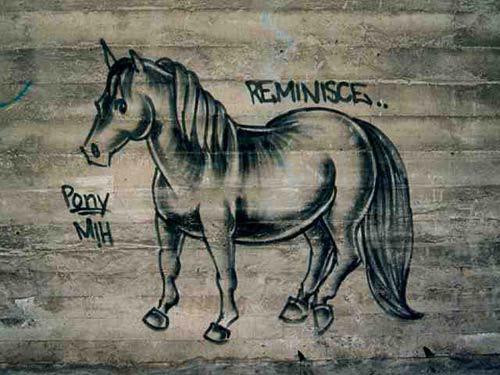 Reminisce Horse