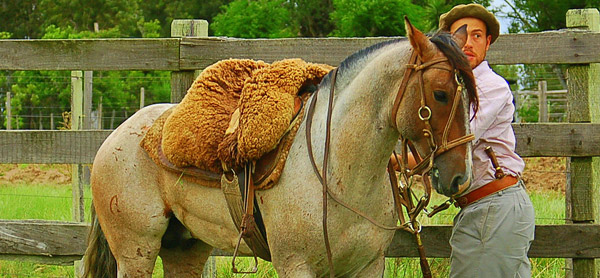 Brazilian Saddle