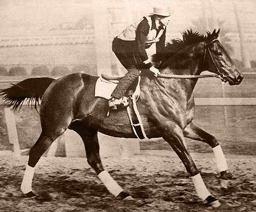 Seabiscuit movie essay